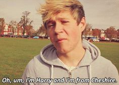 Niall imitating Harry..HAHAHA and Harry walking like a cat in the background(; {GIF}