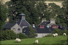 The GlenDronach Distillery (Forgue, Scotland): Top Tips Before You Go - TripAdvisor