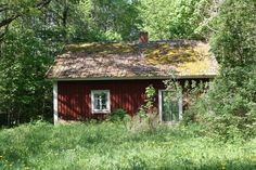 Old Swedish traditional red cottage in the woods