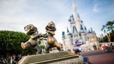 Frolic like Chip 'n' Dale through Magic Kingdom park, but please don't be too wild. The duo is immortalized in a small bronze statue in the center of the park, on the circle at the end of Main Street U.S.A. directly in front of Cinderella Castle. #passporter