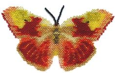 Butterfly Catopsilla Solstitia Pattern by Katherina Kostinsky at Bead-Patterns.com