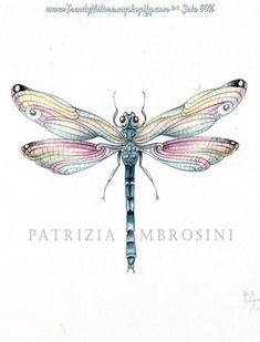 Tattoo Watercolor Dragonfly Wings Ideas For 2019 Dragonfly Drawing, Dragonfly Painting, Dragonfly Tattoo Design, Dragonfly Wings, Butterfly Watercolor, Tattoo Designs, Tattoo Watercolor, Watercolor Painting, Dragonfly Quotes