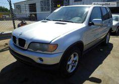 2001 BMW X5 VIN: WBAFA53531LP23818