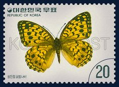 Postage Stamps of Butterfly Series, Argynnis nerippe C. & R. Felder, Insect, Yellow, black, 1976 10 20, 나비 시리즈(제5집), 1976년10월20일, 1039, 왕은점 표범나비, postage 우표