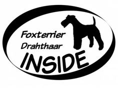 Hund Inside Auto AufkleberInside Aufkleber: Foxterrier Drahthaar 1