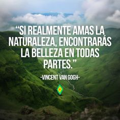 So realmente amas la naturaleza, encontrarás la belleza en todas partes.
