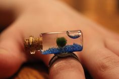 live marimo miniature fingertip aquarium, new shape, cork. $13.99, via Etsy.