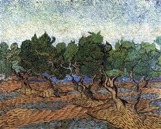 Olive Grove III Vincent Van Gogh Reproduction | 1st Art Gallery