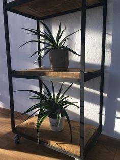 Sunlight, Industrial, Plants, Nikko, Industrial Music, Plant, Planets