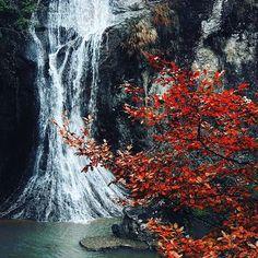 Yuanyangxi. #globalgeopark #yuanyangxi #Travel #wonderful_places #river #travelling #naturegeography #naturephotography #nature #naturesbeauty