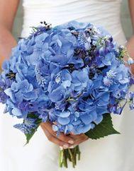 Bouquet azul #bouquetazul