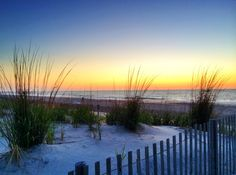 Delaware beaches are some of the most scenic places on the East Coast. Check out this list of the top 10 most gorgeous beaches, and plan your summer trips!