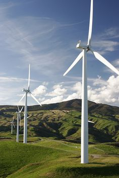 Two large companies are developing wind energy fields in Panama. This green, clean energy will create a new source of energy for a new generation, even providing surplus energy for surrounding countries. One development, Los Pozos will have its OWN