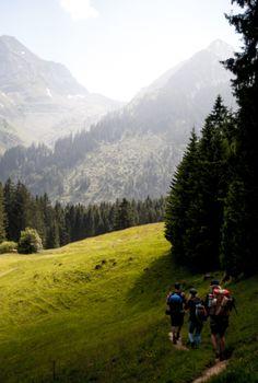 #alpventure Alps, Road Trip, Mountains, Nature, Travel, Naturaleza, Viajes, Road Trips, Trips
