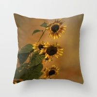 https://society6.com/product/origin-of-sunflowers-0yq_framed-print  #SALE STARTS 09/02! #10% OFF & #FREE SHIPPING #SUNFLOWERS  Origin Of Sunflowers  Throw Pillow
