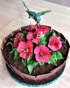 Hummingbird Planter Cake