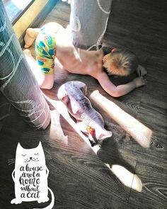 1 отметок «Нравится», 1 комментариев — Юлия Аржанникова 🌍Armelle (@yuliya_ar_ar) в Instagram: «➡➡➡ ДРУЗЬЯ СЕВА и КЛЕО Весеннему солнышку🌞 рады все домочадцы😀 У вас есть дома кошки? Кидайте в…»