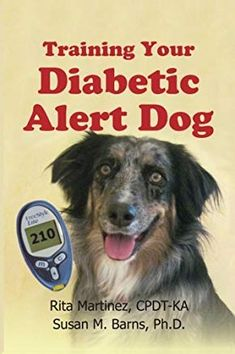 Training Your Diabetic Alert Dog * To view further for this item, visit the image link. Puppy Training Classes, Dog Training Books, Training Your Dog, Training Tips, Leash Training, Training Schedule, Training Videos, Potty Training, Dog Whisperer