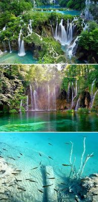 The Plitvice lakes (Croatia) are renowned for their distinctive colors, ranging from azure to green, grey or blue. The colours change constantly depending on the quantity of minerals or organisms in the water and the angle of sunlight.