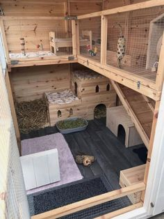 Rabbit care advice - Best 4 Bunny - A fantastic set up here for bunnies to have so much fun in. Thank you Emma for sending this in to u - Rabbit Shed, House Rabbit, Pet Rabbit, Bunny Sheds, Angora Rabbit, Bunny Cages, Rabbit Cages, Rabbit Cage Diy, Diy Bunny Cage