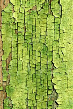 Un vieux bois peint vert craquelé surface An Old Crackled Green Painted Wood Surface. Thinking one of Lana's glazes could create this affect. Patterns In Nature, Textures Patterns, Organic Patterns, Nature Pattern, Foto Macro, Backgrounds Wallpapers, Green Colors, Colours, Green Art