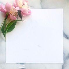 Wallpaper Shelves, Framed Wallpaper, Flower Background Wallpaper, Frame Background, Background Pictures, Flower Backgrounds, Background Patterns, Wallpaper Backgrounds, Cellphone Wallpaper