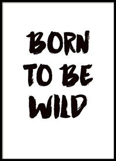 """Typografie-Poster """"Born to be wild"""" in großem Schriftzug. Klassisches Typografie-Poster in Schwarz-Weiß mit wildem Touch, geeignet für alle Rebellen oder für das Kinderzimmer. www.desenio.de"""