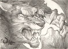 Werewolf Pencil Drawing, in the October 2006: Halloween and Horror Related Themes Comic Art Sketchbook