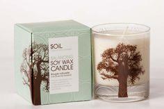 Balancing Baobab Soy Wax Candle by Organic Choice - Soy Wax Candles, Pillar Candles, Candle Jars, Candle Holders, Organic, Pretty, Designers, Candle, Candle Mason Jars