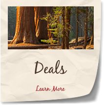 Vacation planning for March 2016. Lodging Deals at Sequoia and Kings Canyon National Park