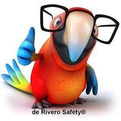 Inicio | de Rivero Safety