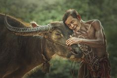 doze. - Farmer and his pet Harmony. Before you run to start planting rice When the attunement to season rice farming in Thailand.