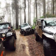 Want this in my life. A jeep family.
