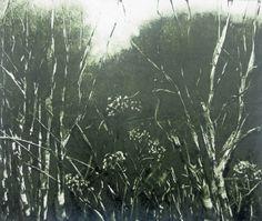 "Original Dark Green Hedgerow Botanical Landscape Monotype Print 10 x 12"" Twilight   OOAK  Fine Art  Print by Zinnia Gallery by ZinniaGallery on Etsy"