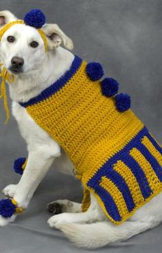 Cheerleader Dog Crochet Pattern...It is commonly known that every dog's dream is to be a Dallas Cowboys cheerleader.