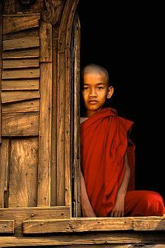 buddhabe:  Burmese Monk in Monastery Window