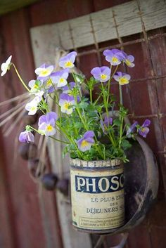 Cute idea for a change up on flower pots :) Ideas Terraza, Bouquet Champetre, Vibeke Design, Sweet Violets, Spring Has Sprung, Jolie Photo, Outdoor Projects, Pansies, Lilacs