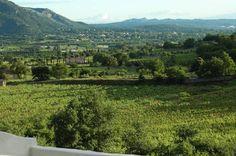vue panoramique depuis la piscine du Temps des Secrets à Cabrières d'Avignon