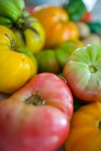 Best Heirloom Tomatoes to plant