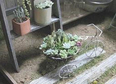 Trike planter