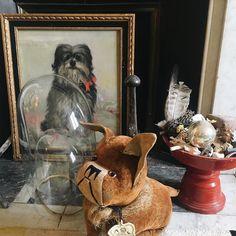 Silent friends #dogs #paintingdog #theartoffineliving #homeoffice #forsale #uniquepieces #cabinetdecuriosités #moreismore #poesía #singular