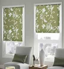 Expressions Roller Shade shown in color Spring Vine - Moss