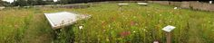 Les Jardiniers Nomades | LES CLEFS DU POTAGER | Domaine de Kerguehennec