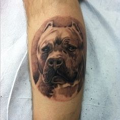 cool pit bull tattoo... SERIOUSLY considering a portrait of my pitty.