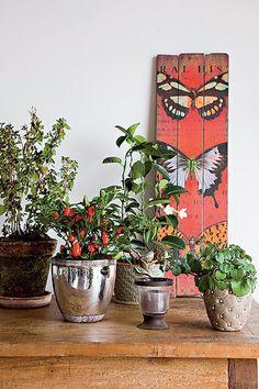 Monte um jardim portátil sobre uma mesa de madeira rústica, próxima da janela. O melhor de tudo é que ele poderá mudar de casa junto com você. Vasos da Jardineiro Fiel. Quadro, L'Oeil