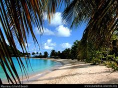 Saltwhistle Bay, Mayreau Island in the Grenadines.... one of my favorite beaches in the world.