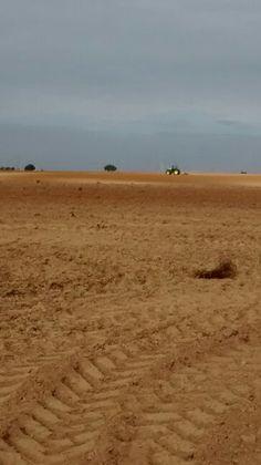 Castilla... Salamanca... Mozodiel...