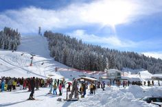Altopiano di Asiago - Alps of Italy