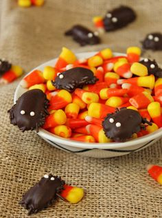DIY Chocolate Cockroaches - Halloween Candy Recipe