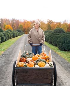 Thanksgiving Outdoor Decoration Ideas Lovely 15 Of Our Best Fall Harvest Decorating Ideas for Your Home Spooky Halloween Decorations, Harvest Decorations, Thanksgiving Decorations, Thanksgiving Feast, Thanksgiving Crafts, Fall Crafts, Holiday Crafts, Martha Stewart Fall, Martha Stewart Thanksgiving
